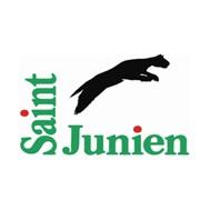 Logo_Saint-Junien_Cadre